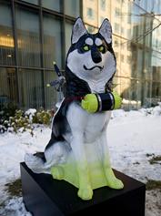 Husky-large